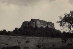 fleckenstein1